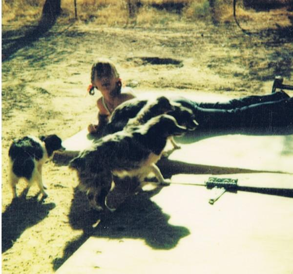 Sandy Travis - with her Toy Aussies